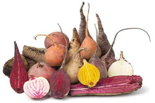 Variety of whole and half multi colored beets