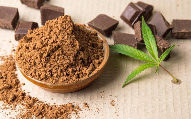 Culinary-Cannabis-iStock-637283082.jpg