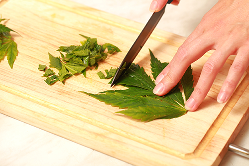 Cannabis-thrive-iStock-823470506