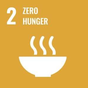 UN SDG 2 Zero Hunger Icon End hunger