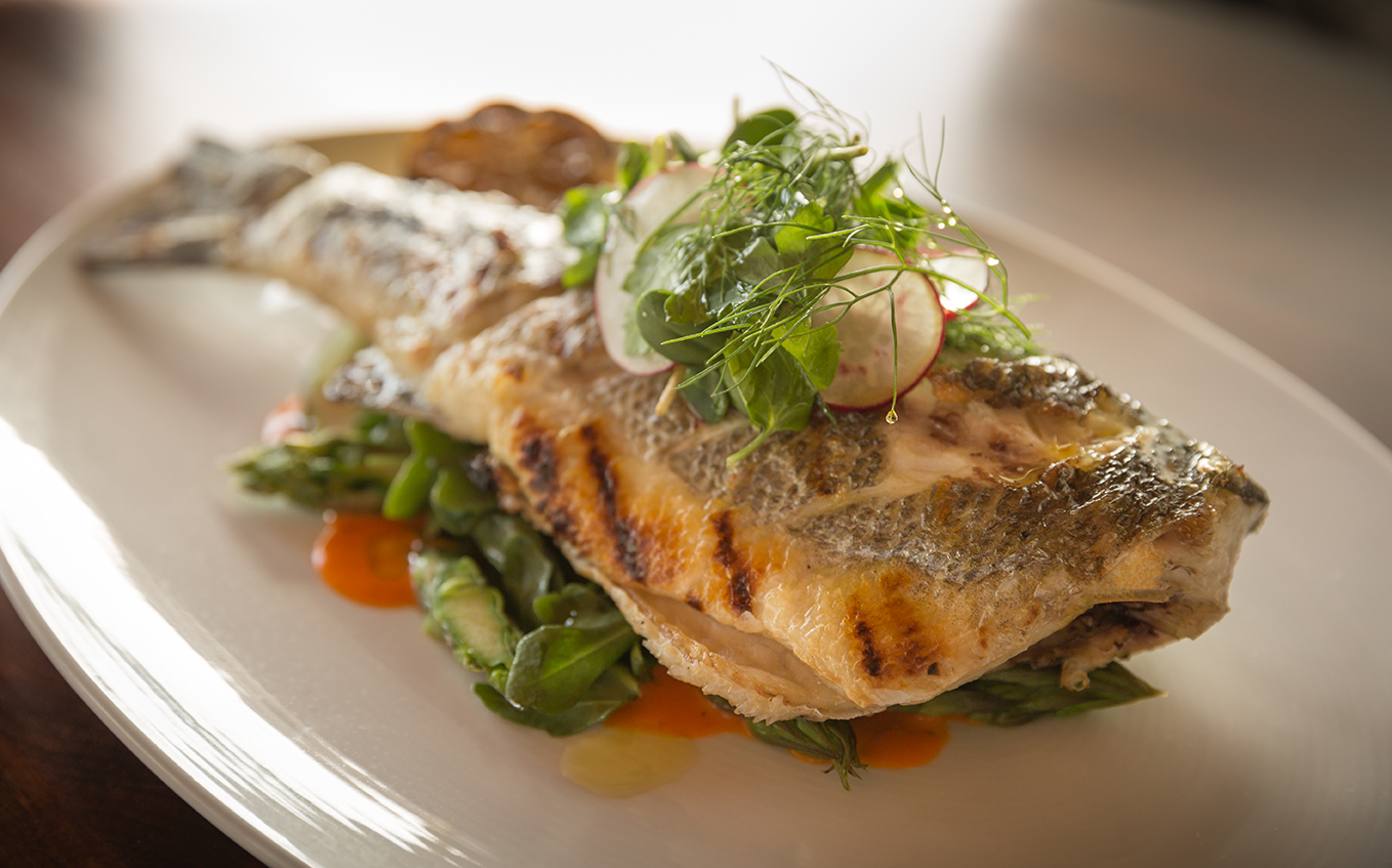 White plate with a grilled fish on top of a bed of greens made by Chef Sam McGann, representing food of the Coastal Carolinas